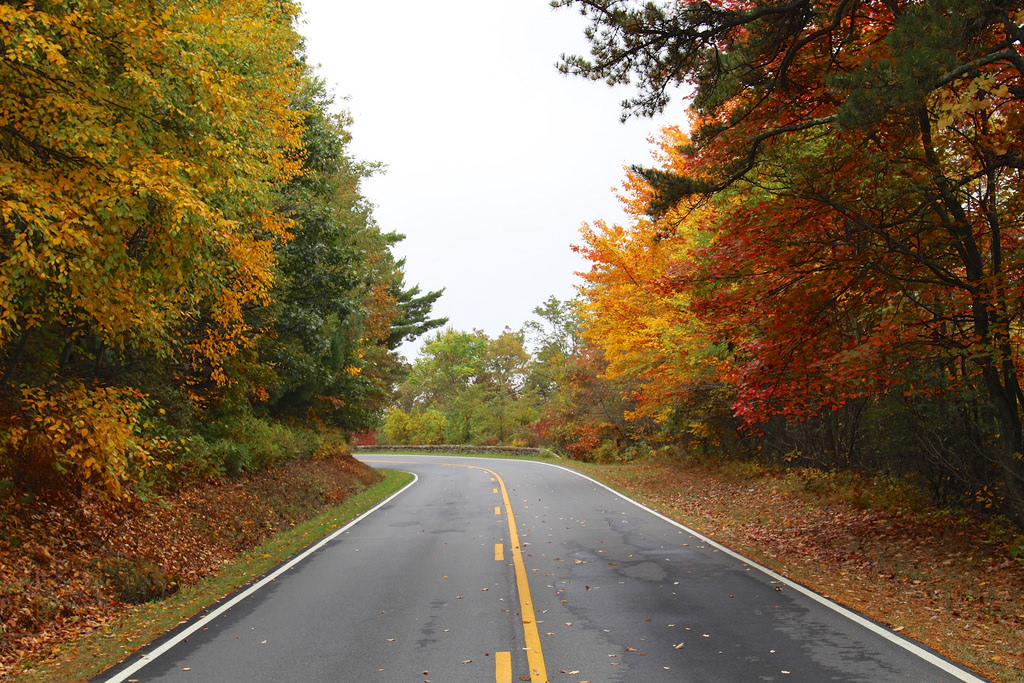 Skyline Drive in Shenandoah National Park is one of the best drives to take this fall.