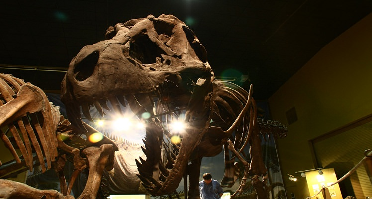 best dinosaur attractions
