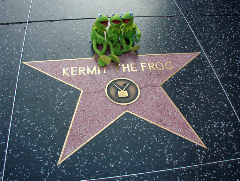 Kermit star on the Hollywood Walk of Fame