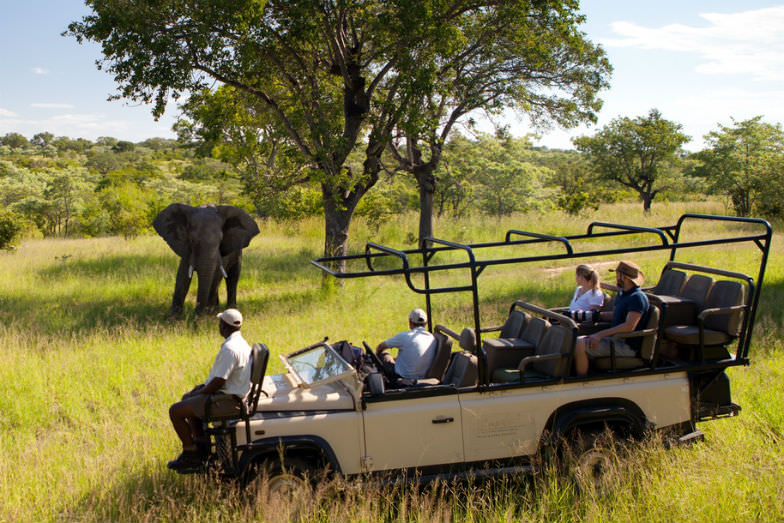 Ulusaba Private Game Reserve, South Africa