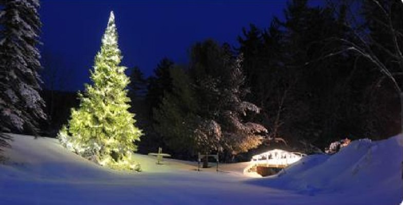 kid-friendly New Year's: Purity Spring Resort