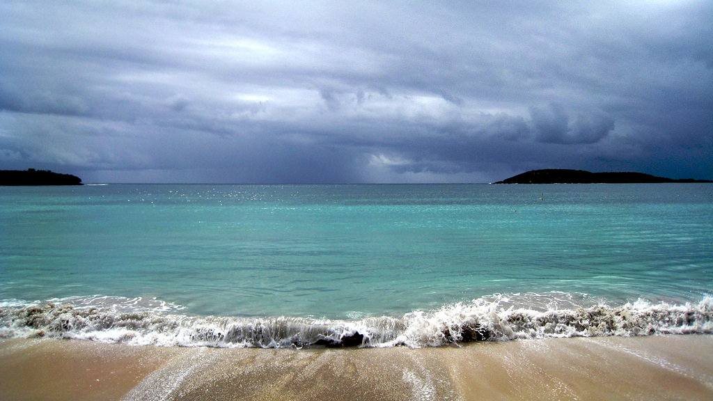 Puerto Rico's Vieques island is home to one of the few remaining bioluminescent bays in the world.