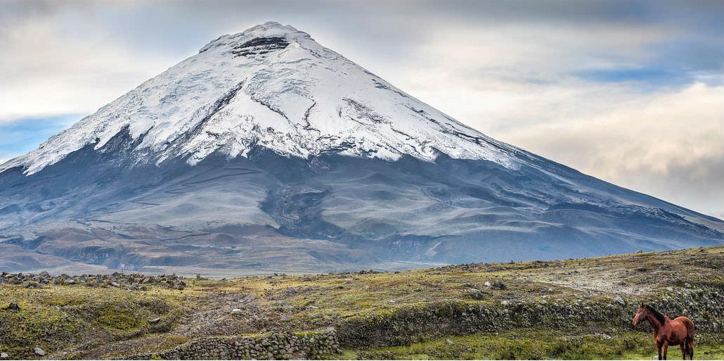 Cotopaxi Volcano at Cotopaxi National Park in Ecuador