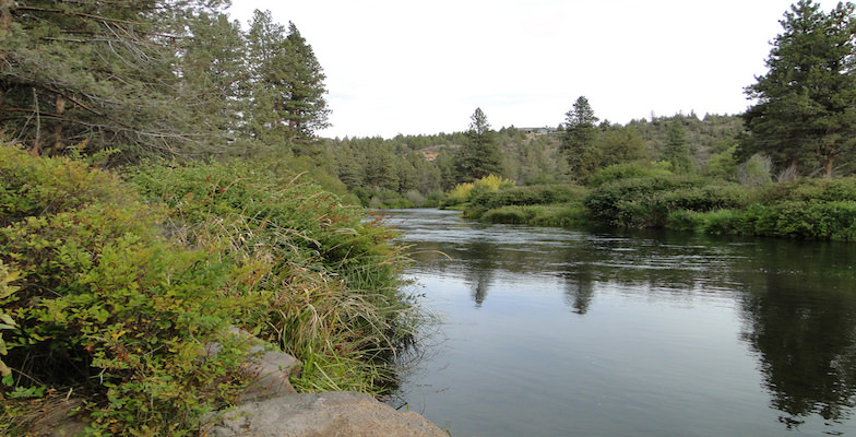State Parks: Tumalo State Park