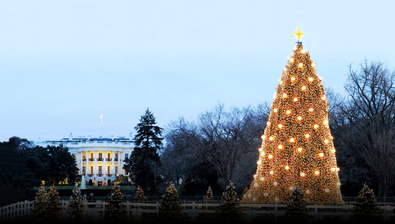The National Christmas Tree in Washington DC