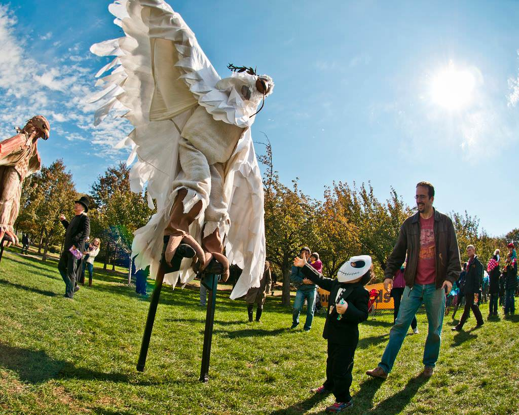 From Ghouls & Ghourds to fall markets, fall activities in Brooklyn are essential to the New York with kids experience.