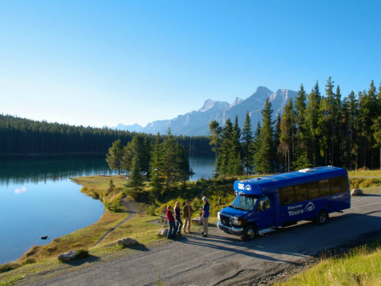 Go on a wildlife safari with Discover Banff Tours.