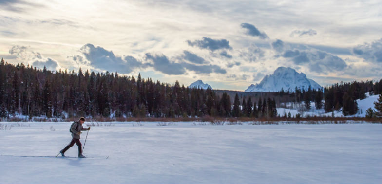 Wildlife Expedition with Teton Science