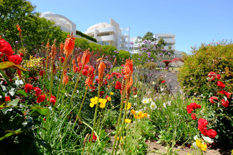 Beautiful garden at the Getty Center
