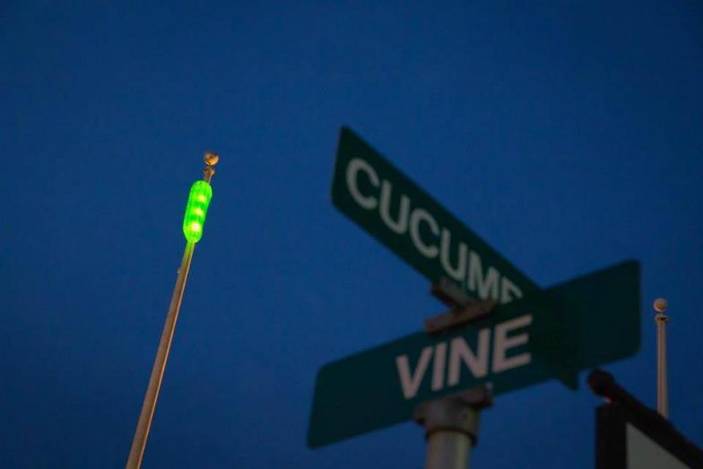 Pickle Drop in Mt. Olive, North Carolina