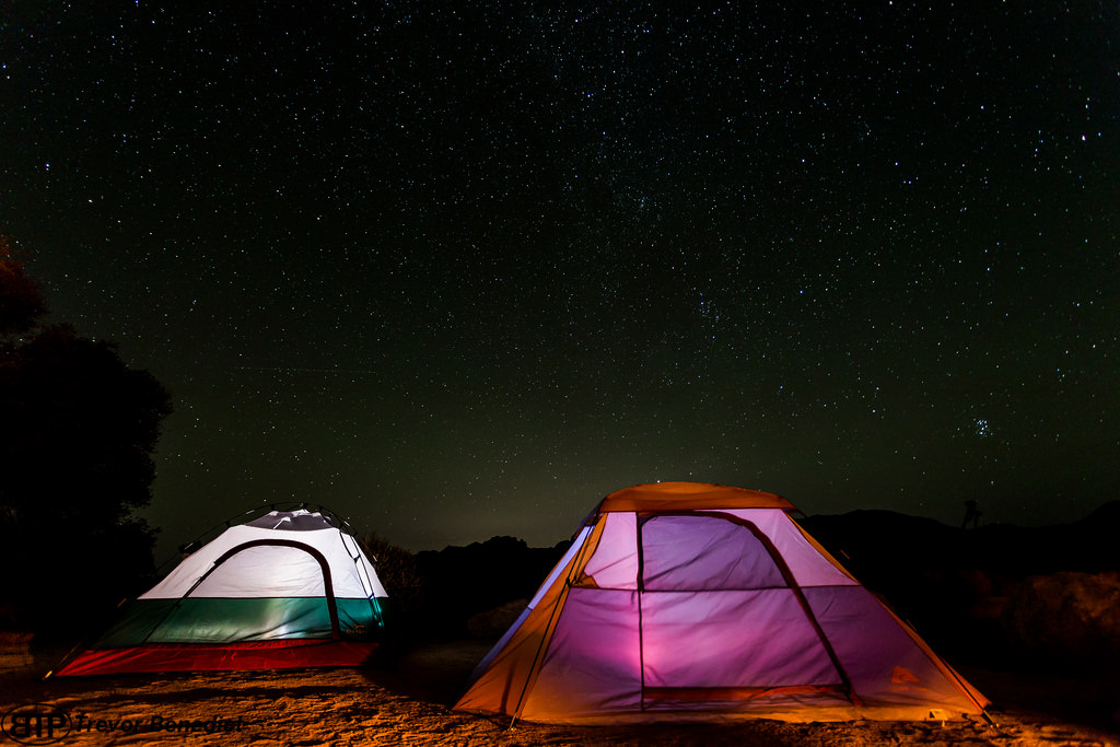 Joshua Tree is home to some of the best campground for families with kids.