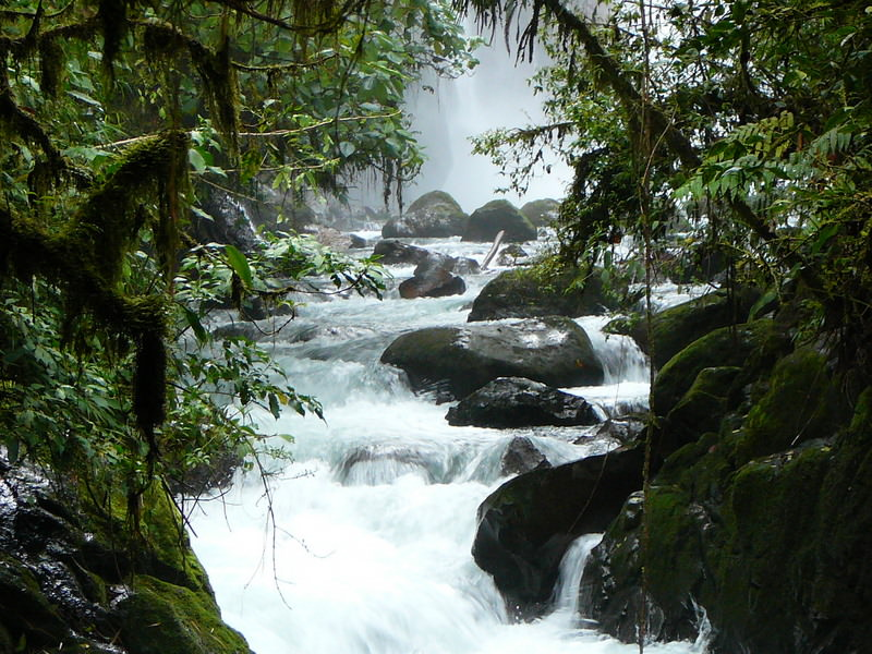 La Paz waterfalls and rapids are among Costa Rica's top natural attractions.