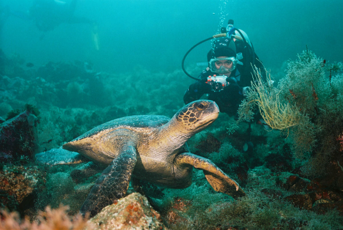 Explore the Galapagos with Ecoventura