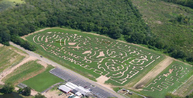 best corn mazes in the U.S.