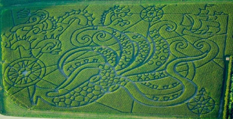 best corn mazes in the US