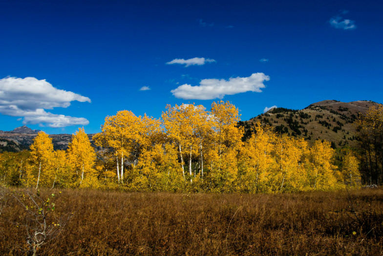 Grand Targhee in Wyoming