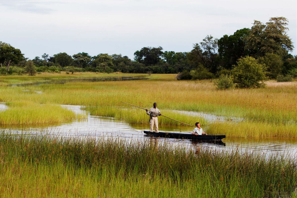 Boating safari on the legendary Okavango Delta
