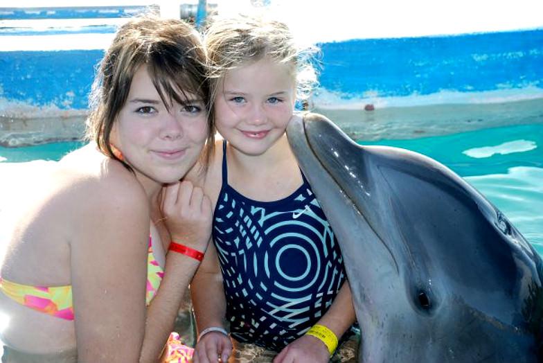 Dolphin Encounters in the Bahamas