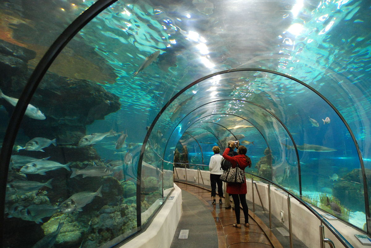 Barcelona Aquarium in Barcelona, Spain
