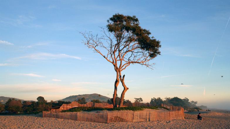 Carpinteria Beach