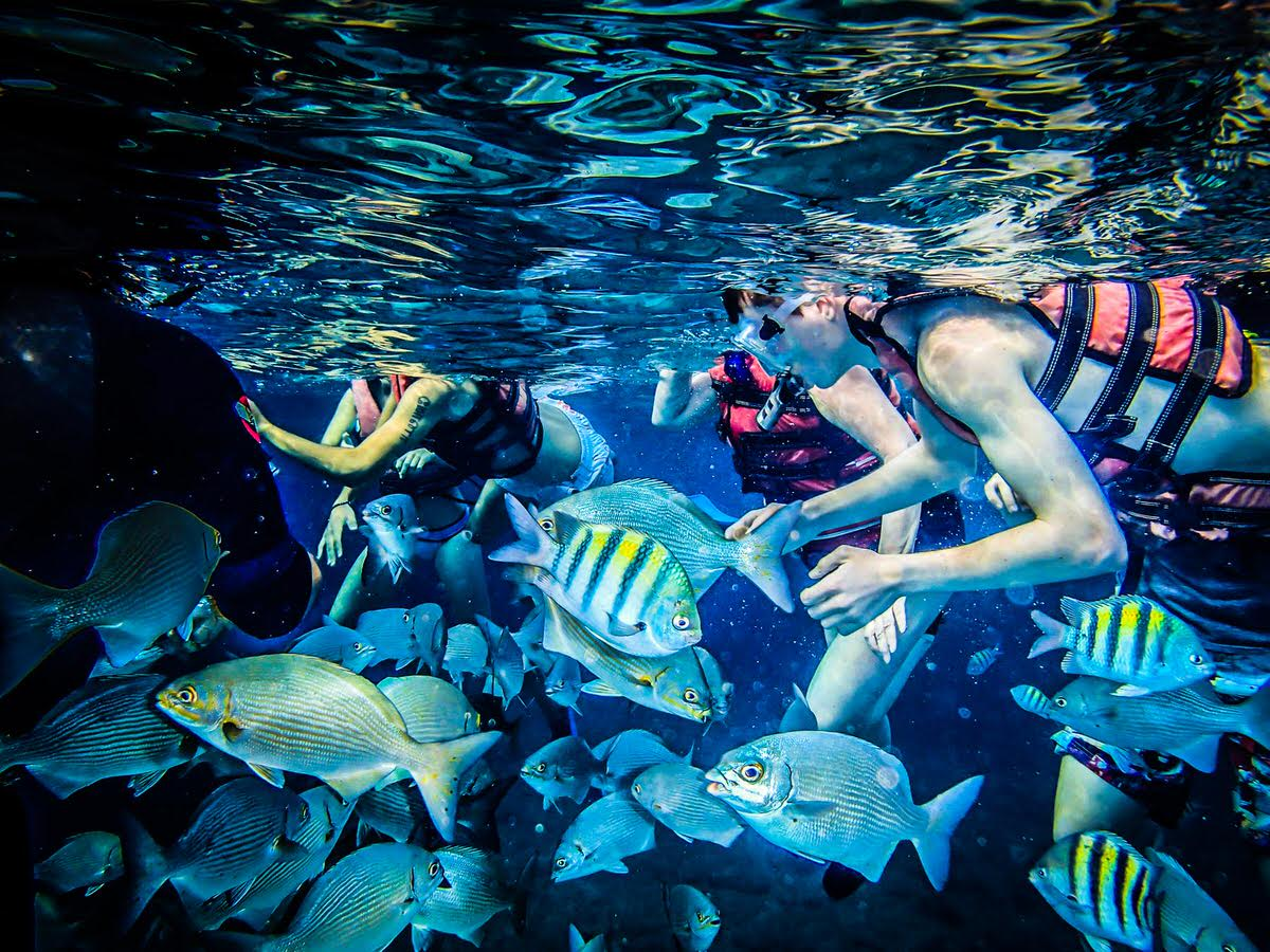 Cuba's Coral Beach is one of the country's most kid-friendly attractions.
