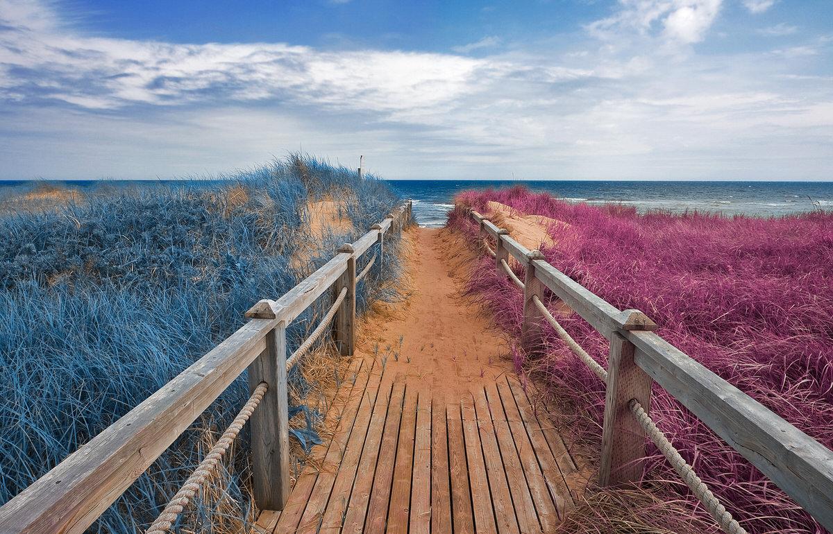 Beach boardwalk in Prince Edward Island