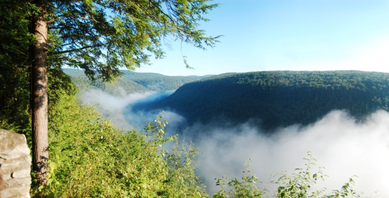 Grand Canyon of Tennessee