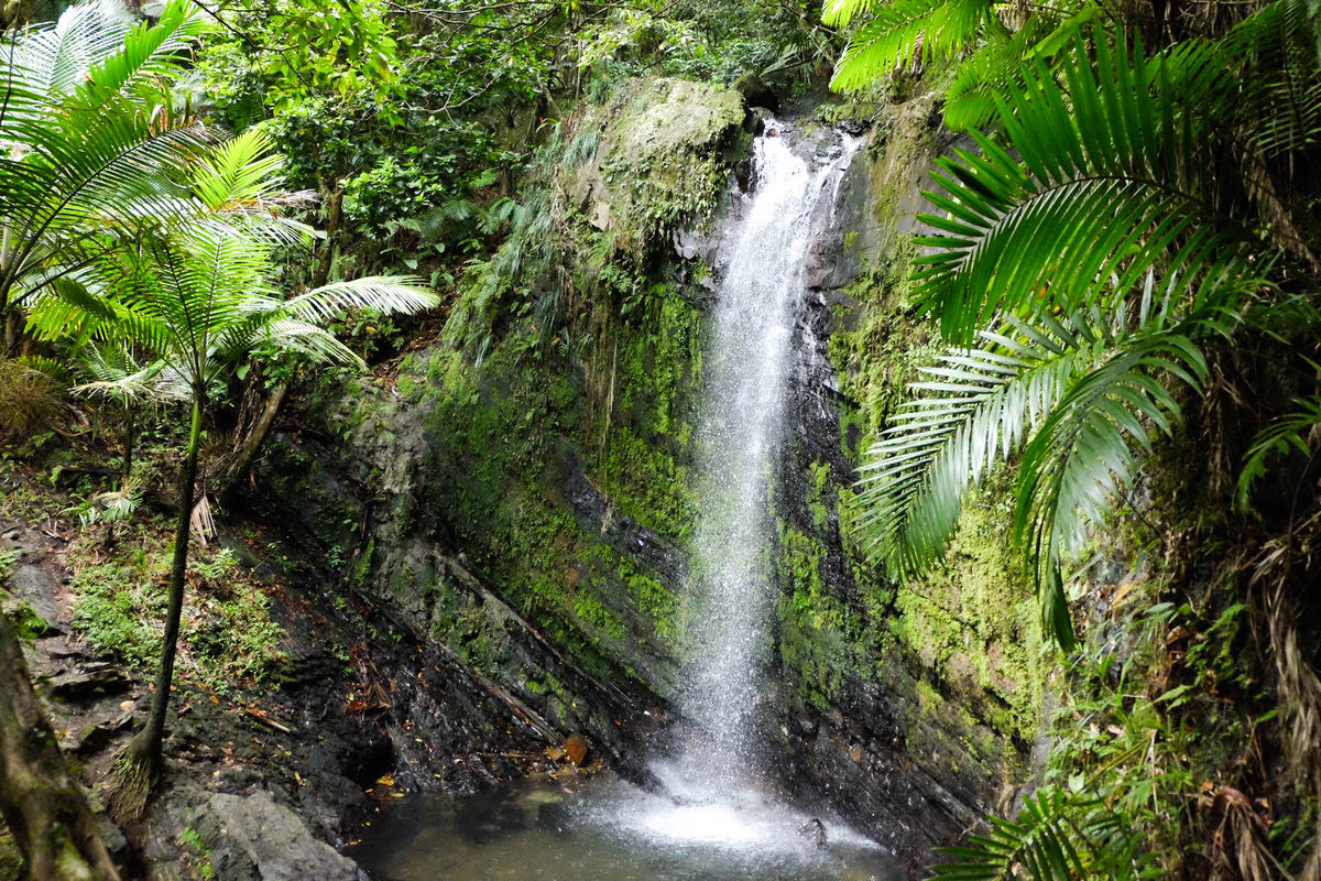 Waterfalls in El Yunque