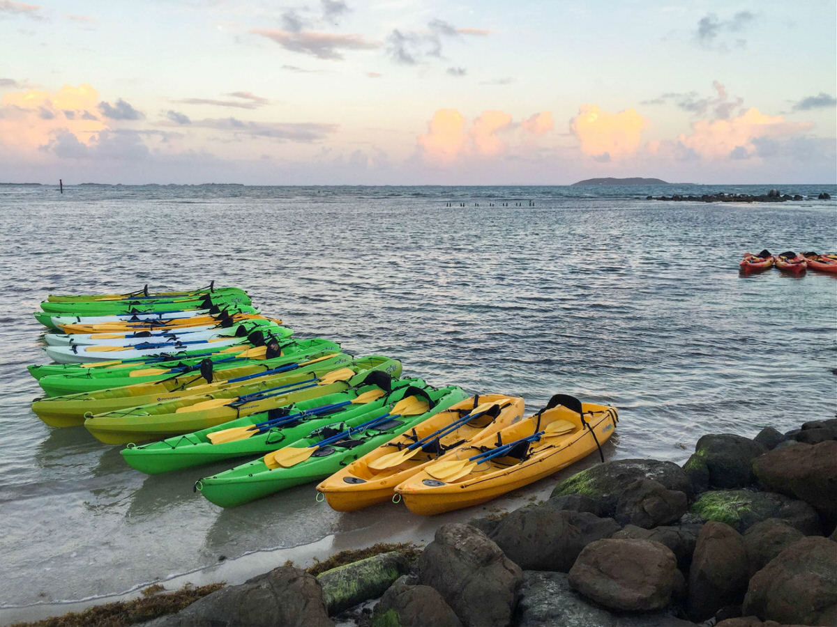 Kayaks for the Bioluminescent Bay excursion