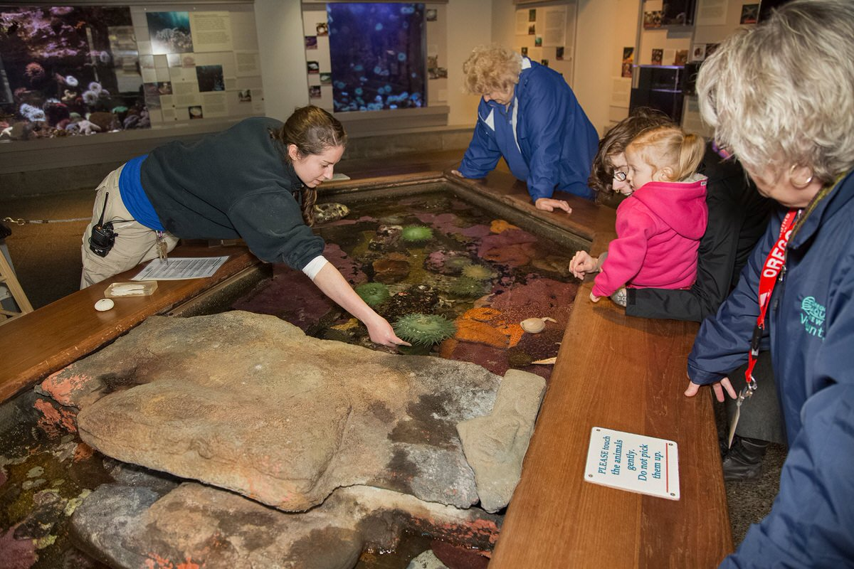 The Oregon Coast Aquarium is one of the best attractions in the Pacific Northwest for families.