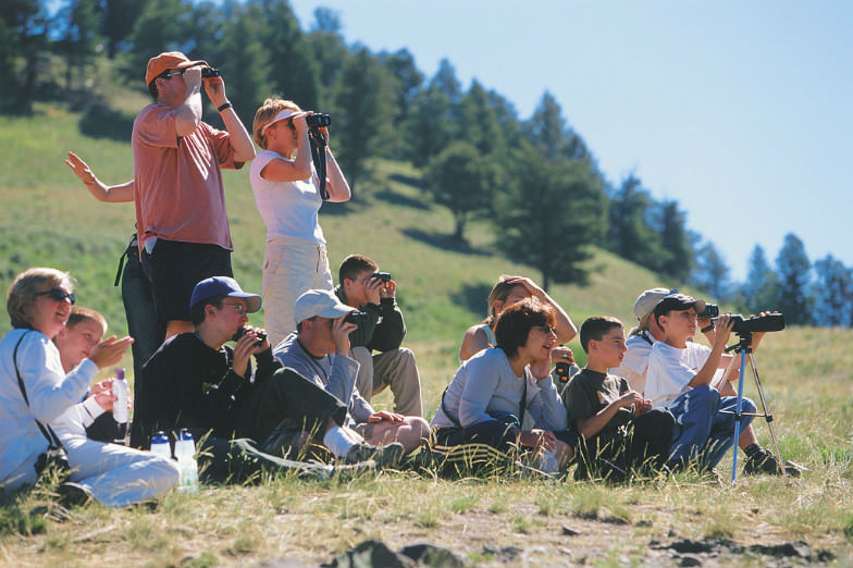 Tour company Austin Adventures can plan your trip for you.