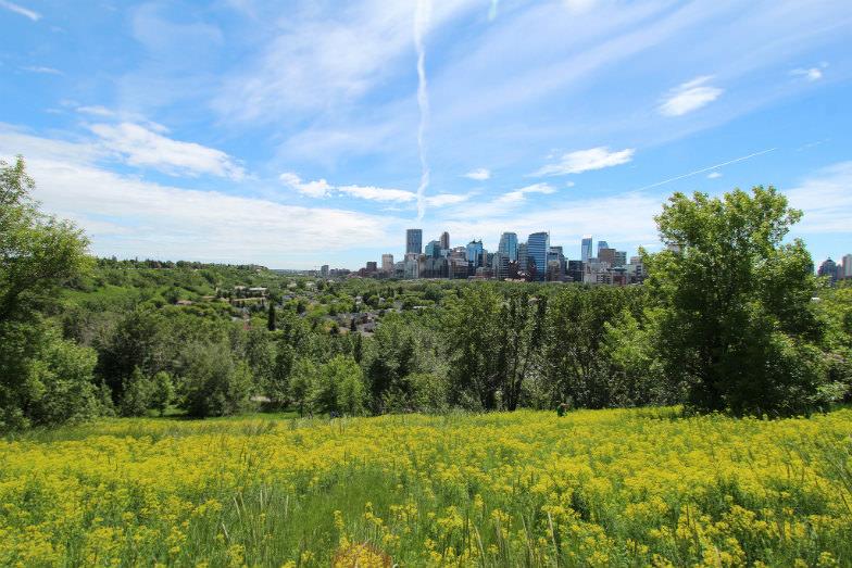 The city of Calgary in Alberta