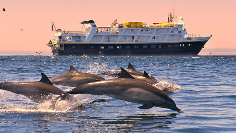 Expeditions cruise ship to Baja California