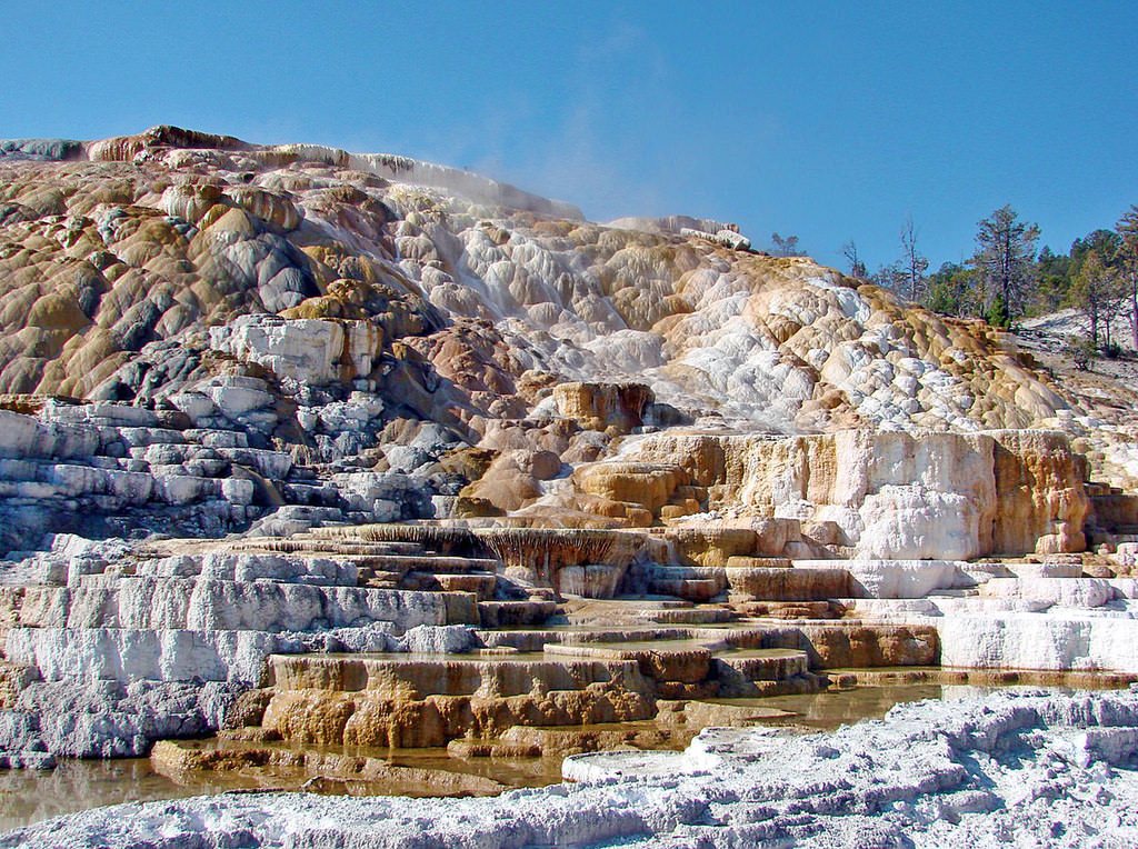 Nature's Sculpture, Mammoth Hot Springs