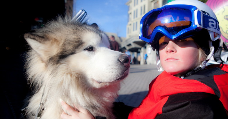 Boy and dog in Whistler